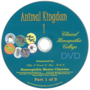Animal Kingdom Kit DVD