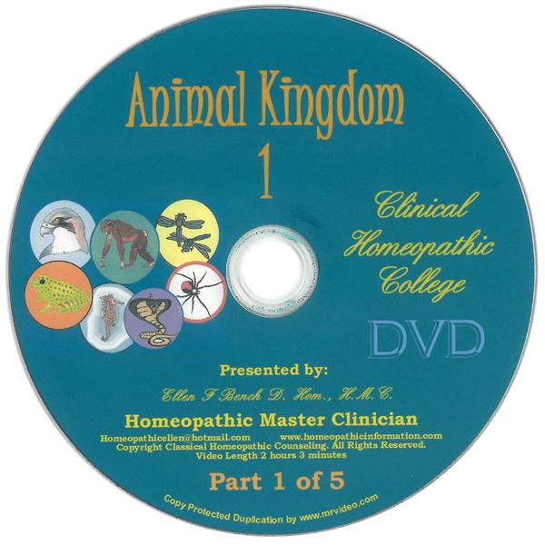 Animal Kingdom Kit DVD